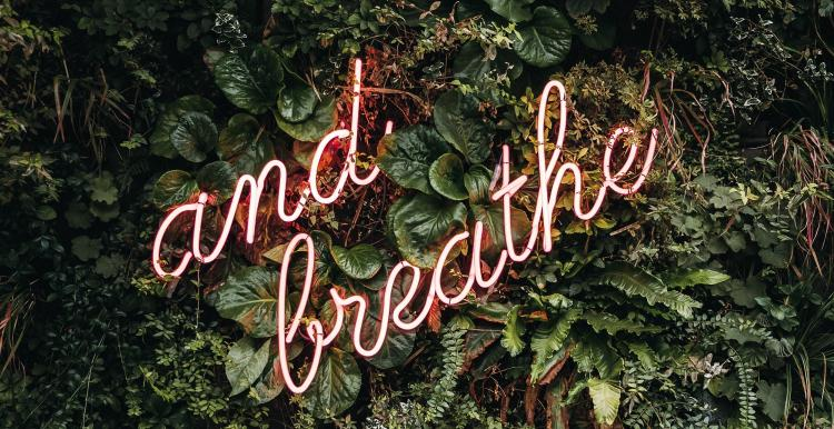 neon sign saying and breathe